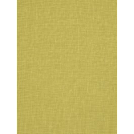 01367 Lime Trend Fabric