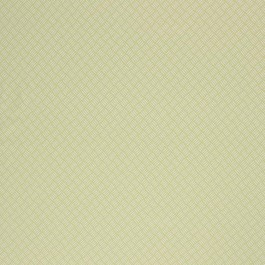 TISKET LIME RM Coco Fabric | The Fabric Co