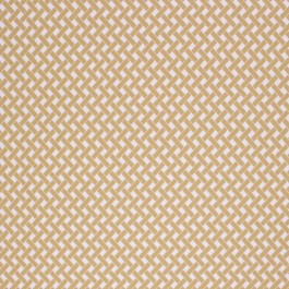 OVERLAY SPRING RM Coco Fabric | The Fabric Co