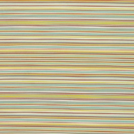 Eaton Stripe Multi RM Coco Fabric | The Fabric Co