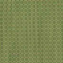 Rizzolli Mint RM Coco Fabric | The Fabric Co