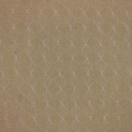Rendezvous Flax RM Coco Fabric