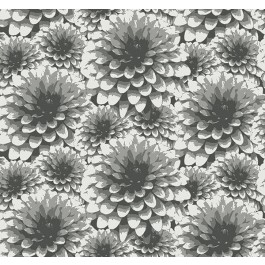 2861-87518 Umbra Charcoal Floral Wallpaper   The Fabric Co