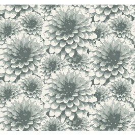2861-87520 Umbra Teal Floral Wallpaper   The Fabric Co