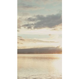 379103 From Dusk To Dawn Wall Mural | The Fabric Co