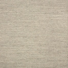 "54"" ACTION ASH  Fabric by Sunbrella Fabrics"