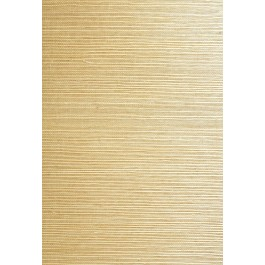 63-54759 Xinmei Beige Grasscloth Wallpaper