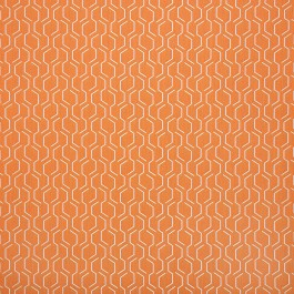 "54"" ADAPTATION APRICOT *40 YD ROLLS* Fabric by Sunbrella Fabrics"