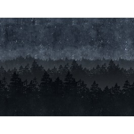 2928-8845 Nordic Night Wall Mural | The Fabric Co