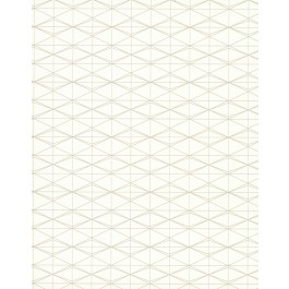 CD1011 Jet Set  Off White Wallpaper   The Fabric Co