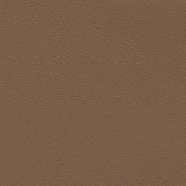 Grand Prix 9472 Buckskin J. Ennis Fabric