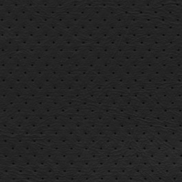 Orion 1612 Ebony J. Ennis Fabric