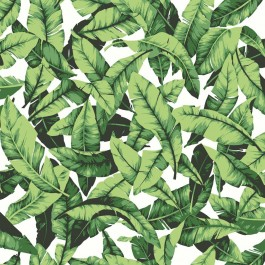 RMK11045WP Tropical Palm Leaf Peel and Stick Wallpaper