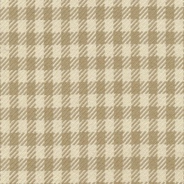 Spit Spot Check Biscuit by Kasmir Fabrics