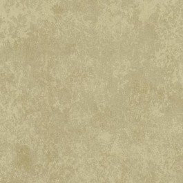 TN0011 Stucco Wallpaper