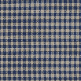 OD Row House Atlantic Blue Check Outdoor Waverly PK Lifestyles Fabric