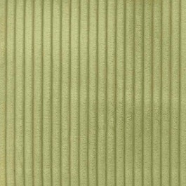 Cab Sage Light Green Velvet Corduroy .25 Inch Cord Upholstery Regal Fabric