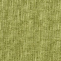 1254 Pear Fabric by Charlotte Fabrics