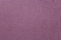 Daily Orchid Crypton Fabric