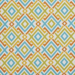 2039 Citrus Fabric by Charlotte Fabrics