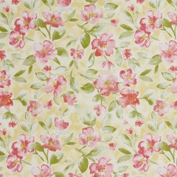 20500-01 Fabric by Charlotte Select