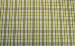 Hatteras Green Roth & Tompkins Fabric