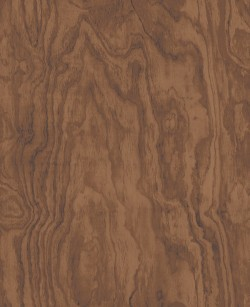 2540-24040 Bentham Brown Plywood Wallpaper