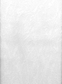 Freese Paintable Plaster Texture Wallpaper
