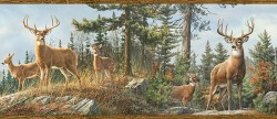 3118-48463B Whitetail Crest Multicolor Forest Border