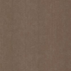 Salima Brown Organic Texture Wallpaper
