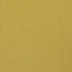 3883 Citrus Fabric by Charlotte Fabrics