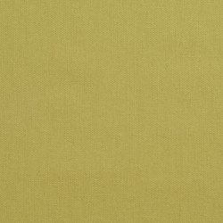 3890 Pear Fabric by Charlotte Fabrics