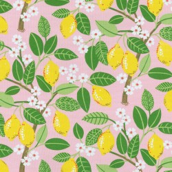 Lemon Tree 407772 Blush PKL Studio Outdoor Fabric