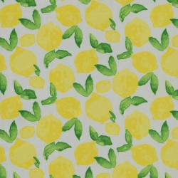 Citrus Squeeze 408930 Yellow PKL Studio Outdoor Fabric