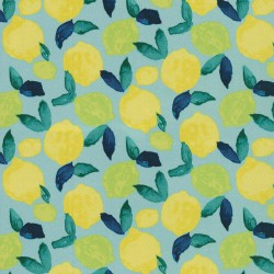 Citrus Squeeze 408931 Turquoise PKL Studio Outdoor Fabric