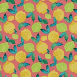 Citrus Squeeze 408932 Fuschia PKL Studio Outdoor Fabric