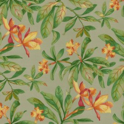 Orchid Valley 408962 Putty PKL Studio Outdoor Fabric