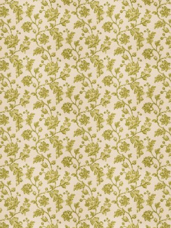 Exquisite Bello Floral Lime Fabric