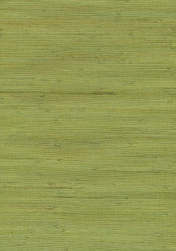 Jirou Green Grasscloth Wallpaper