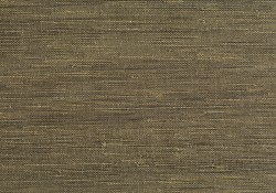 Nuo Dark Green Grasscloth Wallpaper