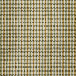 5818 Spring Check Fabric by Charlotte Fabrics
