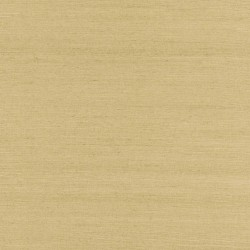 ShuFang Beige Grasscloth Wallpaper