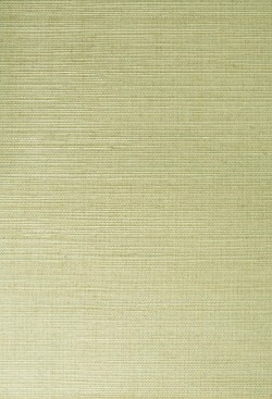 Narumi Light Green Grasscloth Wallpaper