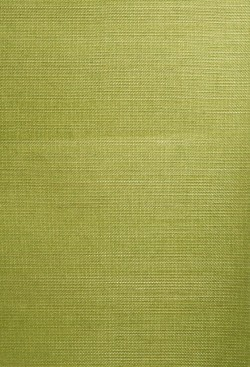 Wakumi Olive Grasscloth Wallpaper