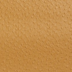 7705 Camel Fabric by Charlotte Fabrics