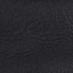 7750 Black Fabric by Charlotte Fabrics