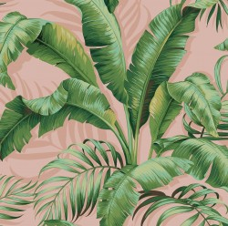 Palmiers 802570 Blush Tommy Bahama Outdoor Fabric