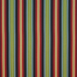 Bluffview Stripe Amazon Kasmir Fabric