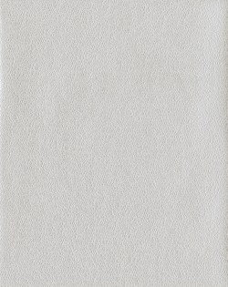 COD0558N White/Off Whites Tatting Wallpaper
