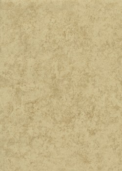 ET4071 Beige Stone Allover Wallpaper